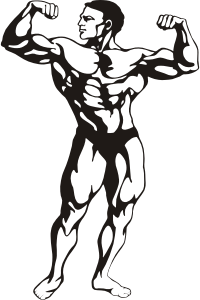 https://openclipart.org/image/300px/svg_to_png/264438/Fitness-Man.png