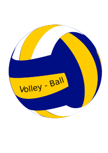 https://openclipart.org/image/300px/svg_to_png/264700/volley-ball-female.png