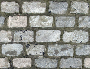 https://openclipart.org/image/300px/svg_to_png/264732/Cobblestone2.png