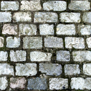 https://openclipart.org/image/300px/svg_to_png/264733/Cobblestone1.png