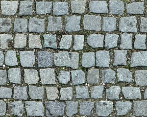 https://openclipart.org/image/300px/svg_to_png/264736/Cobblestone5.png
