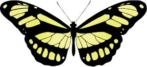 https://openclipart.org/image/300px/svg_to_png/265093/Butterfly15Yellow.png