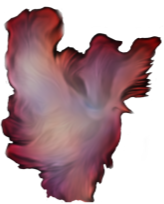 https://openclipart.org/image/300px/svg_to_png/265781/Dove-Fantasy-Flame.png