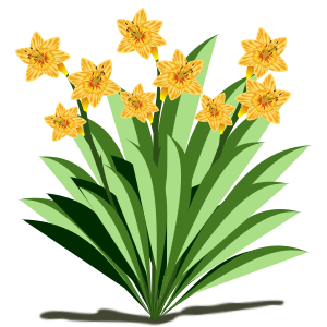 https://openclipart.org/image/300px/svg_to_png/265815/flower_29.png