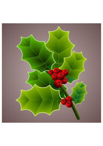 https://openclipart.org/image/300px/svg_to_png/265816/holly_branch_almeidah_04112016.png
