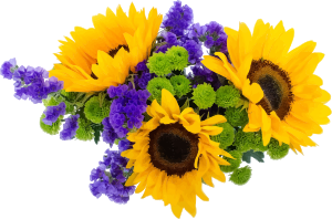 https://openclipart.org/image/300px/svg_to_png/266316/Flowers8.png