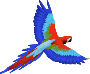 https://openclipart.org/image/300px/svg_to_png/266383/macaw.png