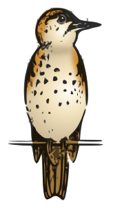 https://openclipart.org/image/300px/svg_to_png/266927/Lutz---thrush-colored.png