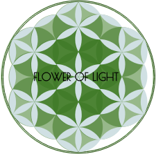 https://openclipart.org/image/300px/svg_to_png/267884/FLOWER-OF-LIGHT-2016120454.png