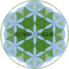 https://openclipart.org/image/300px/svg_to_png/267885/FLOWER-OF-LIGHT-2016120448.png
