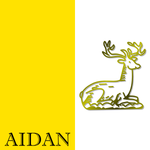 https://openclipart.org/image/300px/svg_to_png/268060/Aidan.png