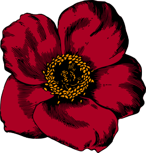 https://openclipart.org/image/300px/svg_to_png/268411/Flower96Colour.png