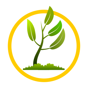 https://openclipart.org/image/300px/svg_to_png/270498/growing_grow_110120171.png