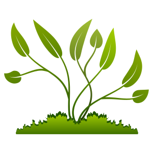 https://openclipart.org/image/300px/svg_to_png/270500/growing_grow_110120173.png