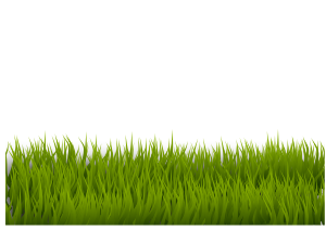 https://openclipart.org/image/300px/svg_to_png/270520/grass_120120171.png