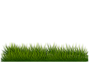 https://openclipart.org/image/300px/svg_to_png/270521/grass_120120172.png