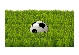 https://openclipart.org/image/300px/svg_to_png/270534/grass_120120173.png