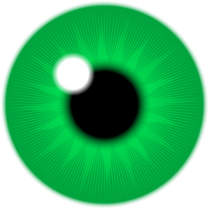 https://openclipart.org/image/300px/svg_to_png/271553/GreenIris.png