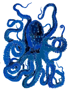 https://openclipart.org/image/300px/svg_to_png/271748/Blue-Octopus-2017013052.png