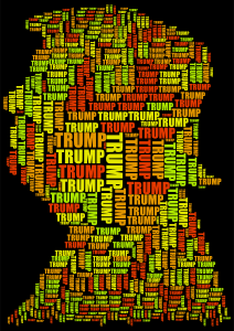 https://openclipart.org/image/300px/svg_to_png/271907/Trump-Profile-Word-Cloud.png