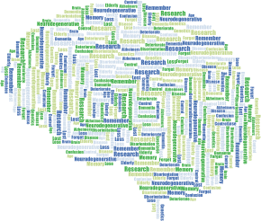 https://openclipart.org/image/300px/svg_to_png/272129/Alzheimers-Brain-Word-Cloud-No-Background.png
