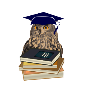 https://openclipart.org/image/300px/svg_to_png/273854/owl-01.png
