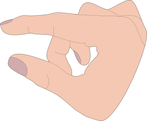 https://openclipart.org/image/300px/svg_to_png/274973/finger-pan.png