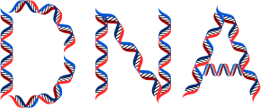 https://openclipart.org/image/300px/svg_to_png/275993/DNA-Typography.png