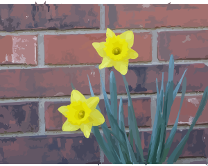https://openclipart.org/image/300px/svg_to_png/276343/daffodils-01.png