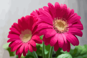 https://openclipart.org/image/300px/svg_to_png/276383/gerbera-02.png
