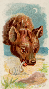 https://openclipart.org/image/300px/svg_to_png/276399/CigCardHyena.png