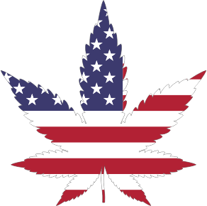 https://openclipart.org/image/300px/svg_to_png/277759/Marijuana-American-Flag-With-Stroke.png