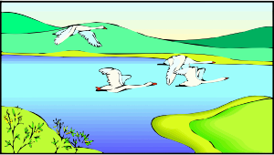 https://openclipart.org/image/300px/svg_to_png/278660/Geese1.png