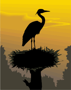 https://openclipart.org/image/300px/svg_to_png/278812/Stork2.png