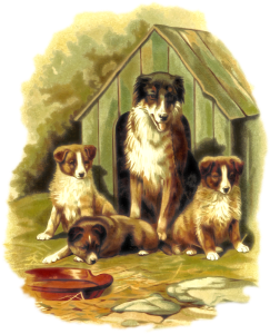 https://openclipart.org/image/300px/svg_to_png/278816/CuteDogs5.png
