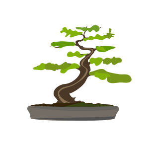 https://openclipart.org/image/300px/svg_to_png/279117/bonsai-modified.png