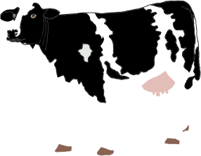 https://openclipart.org/image/300px/svg_to_png/279461/Realistic-Cow-Illustration.png