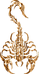 https://openclipart.org/image/300px/svg_to_png/279891/Sleek-Tribal-Scorpion-Polished-Copper.png