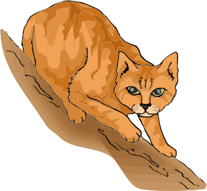 https://openclipart.org/image/300px/svg_to_png/279999/CatsLife8.png