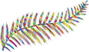 https://openclipart.org/image/300px/svg_to_png/281144/Prismatic-Fern-Leaf-Silhouette-By-Karen-Arnold.png