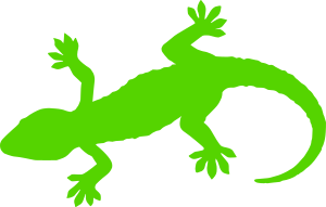 https://openclipart.org/image/300px/svg_to_png/281310/green-gecko.png