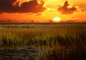 https://openclipart.org/image/300px/svg_to_png/282125/SunsetScene.png