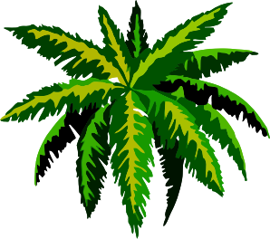 https://openclipart.org/image/300px/svg_to_png/282596/Plant6.png