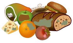 https://openclipart.org/image/300px/svg_to_png/283125/wasting_food.png