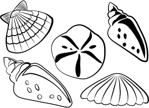 https://openclipart.org/image/300px/svg_to_png/284830/sea-shells.png