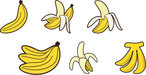 https://openclipart.org/image/300px/svg_to_png/285221/gahag-0016494269.png