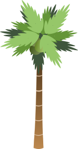 https://openclipart.org/image/300px/svg_to_png/7897/bsantos_Palm_Tree.png