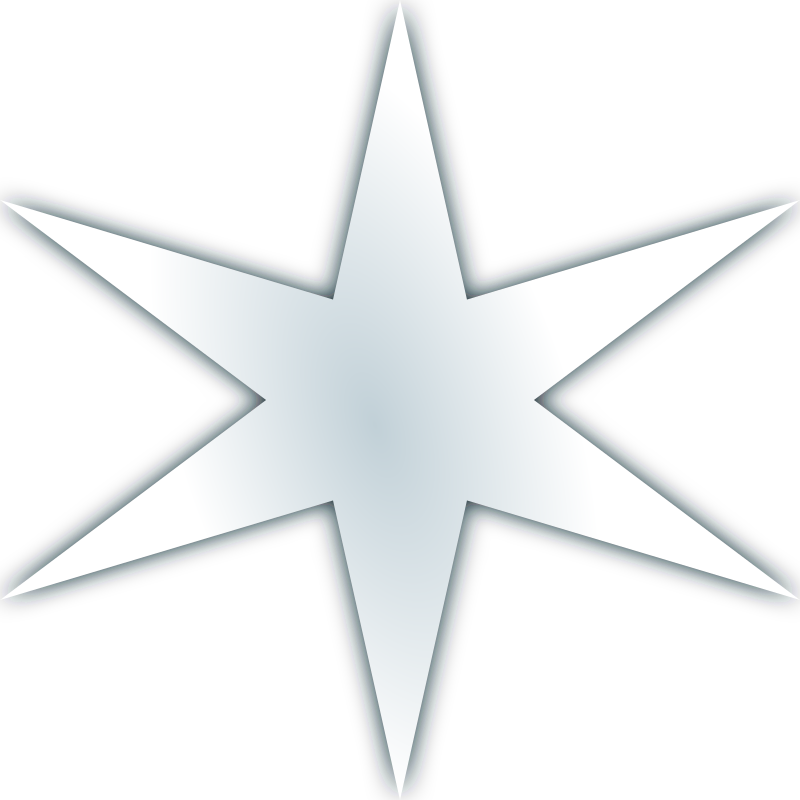 Snow flake icon 3