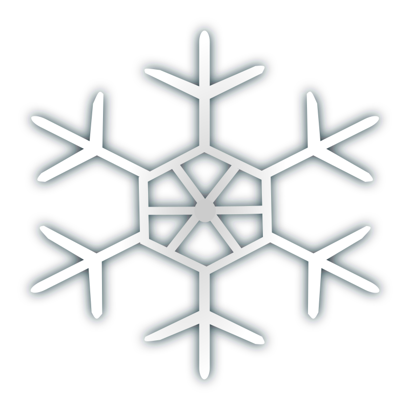 Snow flake icon 4