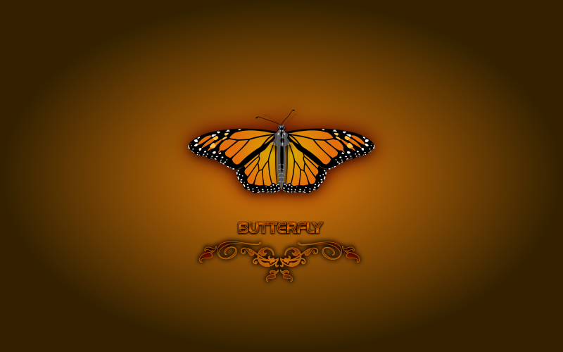 Butterfly (Wallpaper)